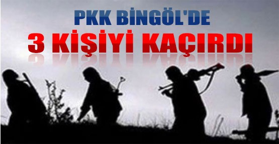 PKK araç yaktı, 4 kisiyi kaçırdı