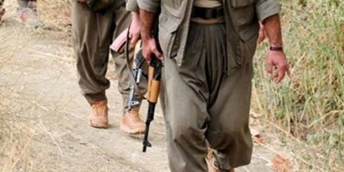Bingöl'de 2 PKK'lı Teslim Oldu