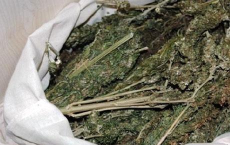 Bingöl'de büyük uyuşturucu operasyonu