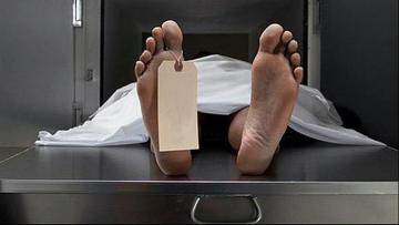 Bingöl'de 1091 kişi hayatını kaybetti